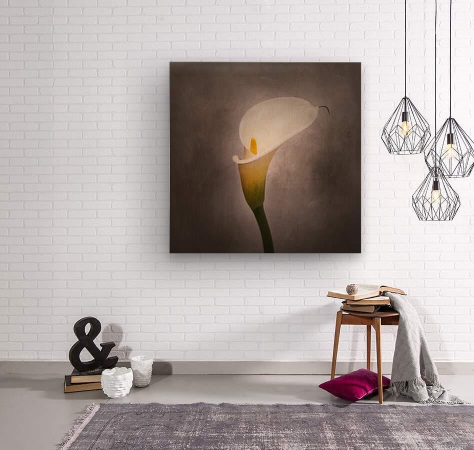 Graceful flower - Calla No. 4 | vintage style   Wood print