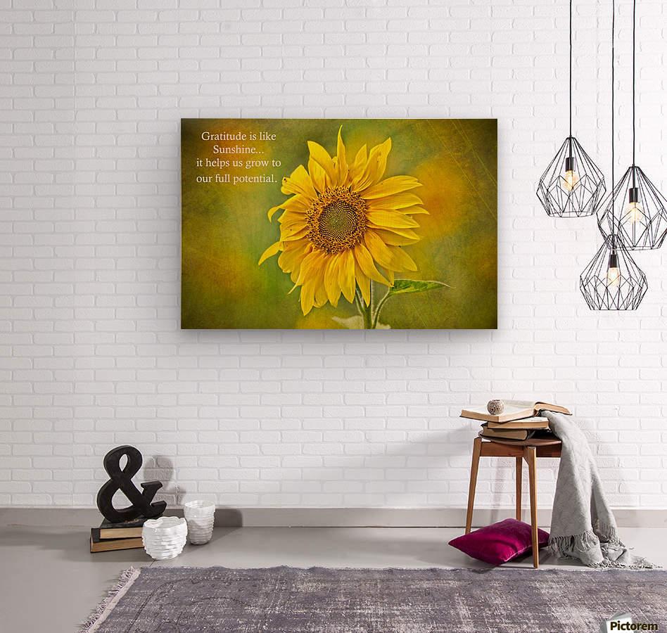 Gratitude is Like Sunshine  Wood print