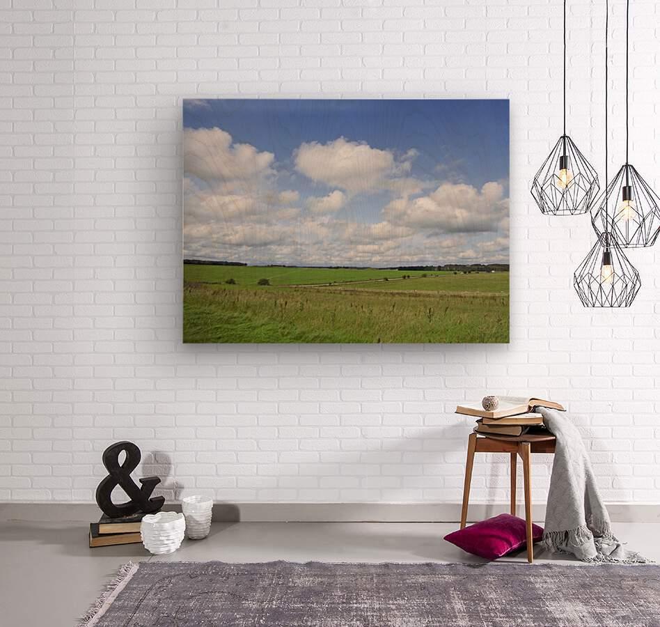 Salisbury Plain on the Road to Stonehenge  Wood print