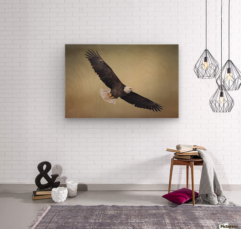 King of the Skies  Wood print
