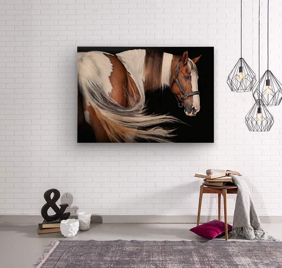 Paint Horse Portrait  Wood print