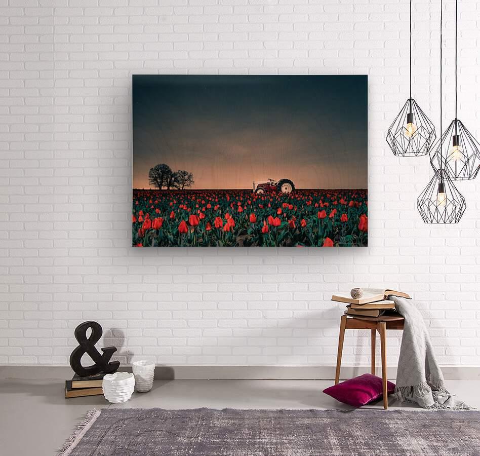 Tractors & Tulips  Wood print