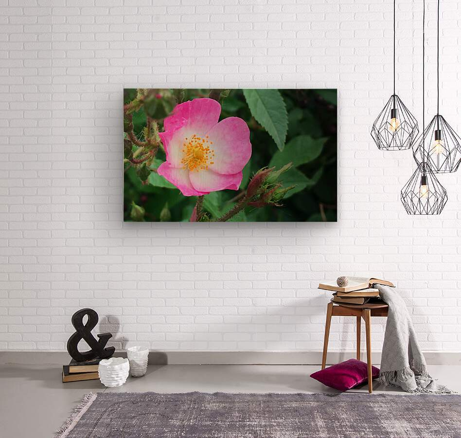 The Bloom  Wood print