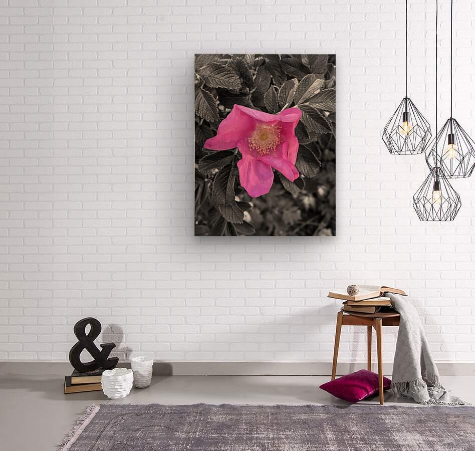 BlackPinkLove  Wood print