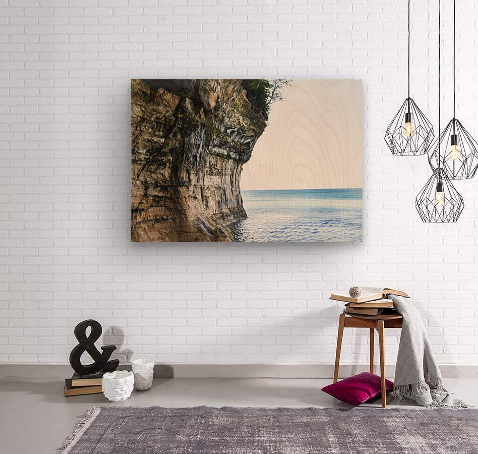 Land Meets Water  Wood print