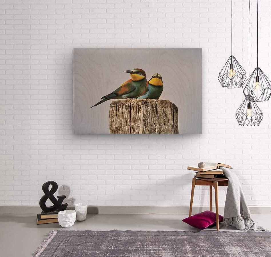 European Bee-Eaters  Wood print