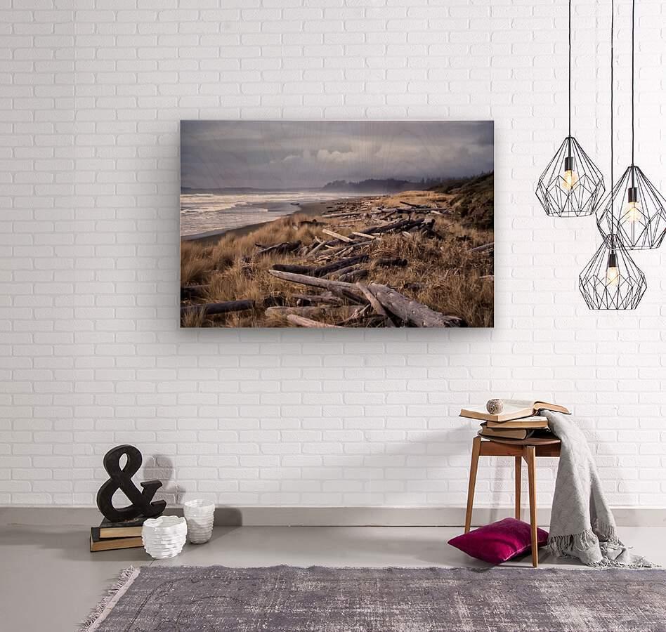 Beached Driftlogs  Wood print