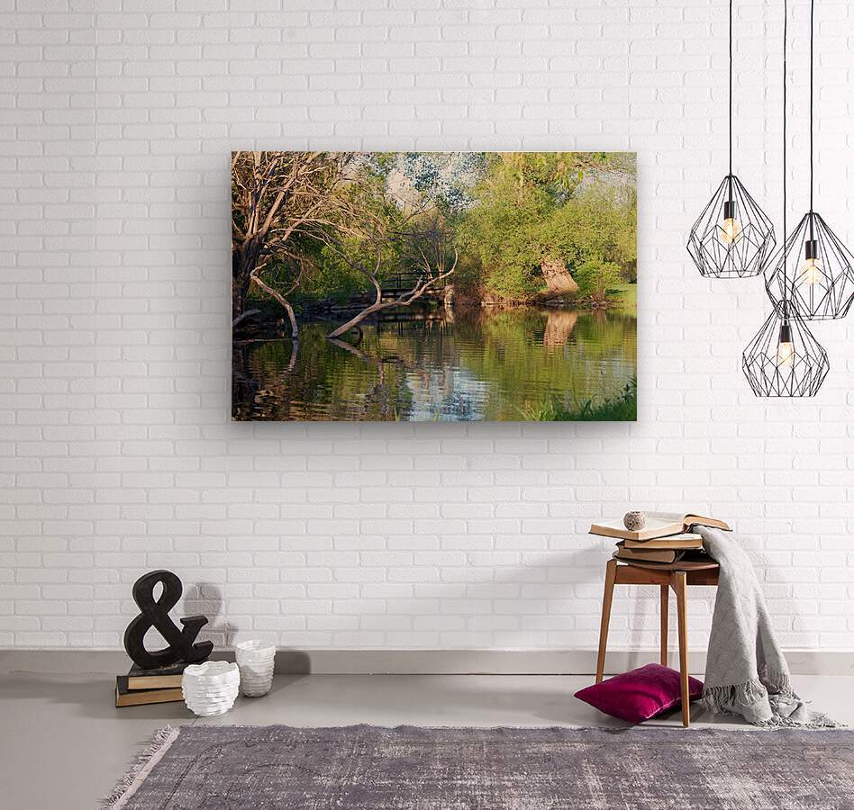 Relaxing Pond View  Wood print