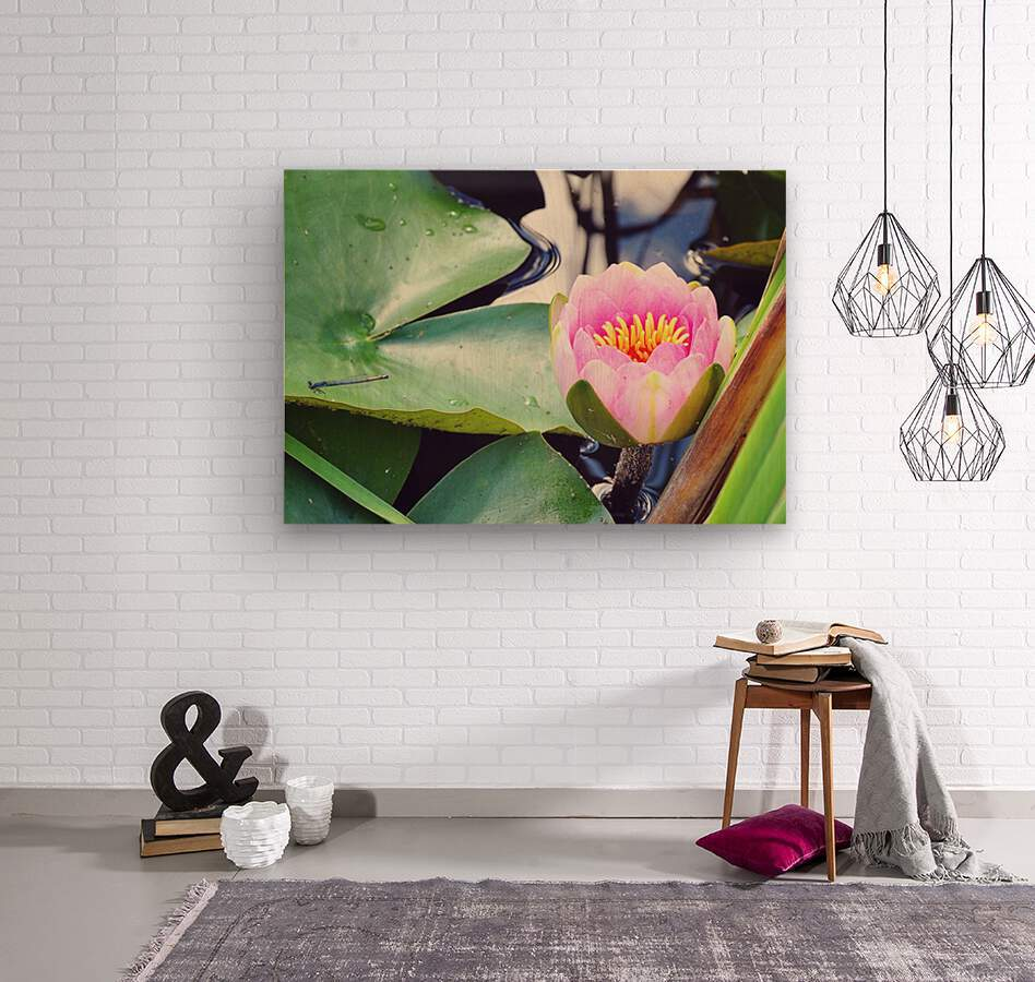 Dragonfly And Lily  Wood print