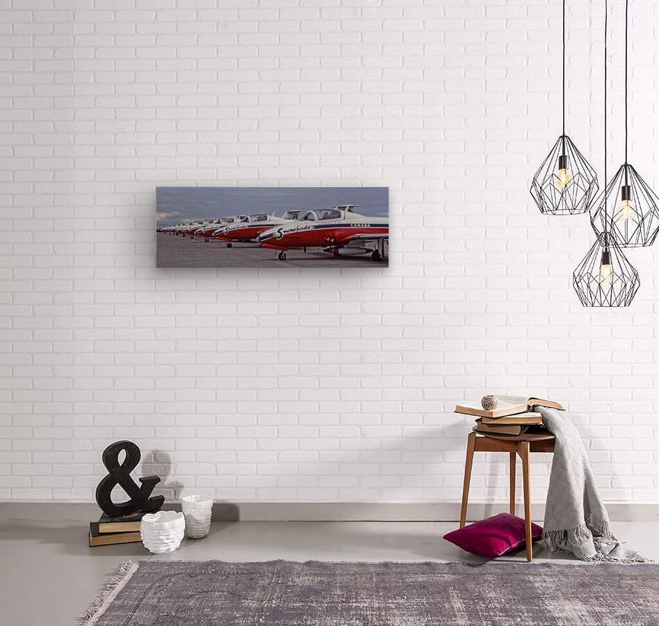 Snowbirds Between Shows  Wood print