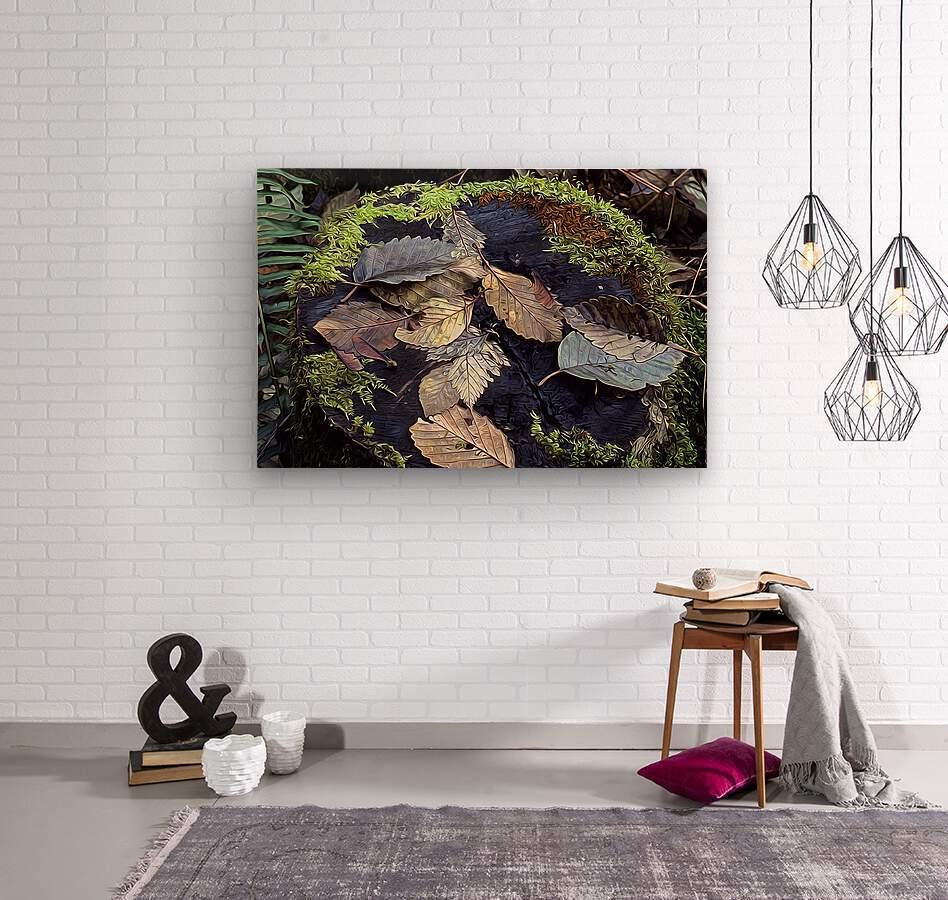 Mossy Stump  Wood print