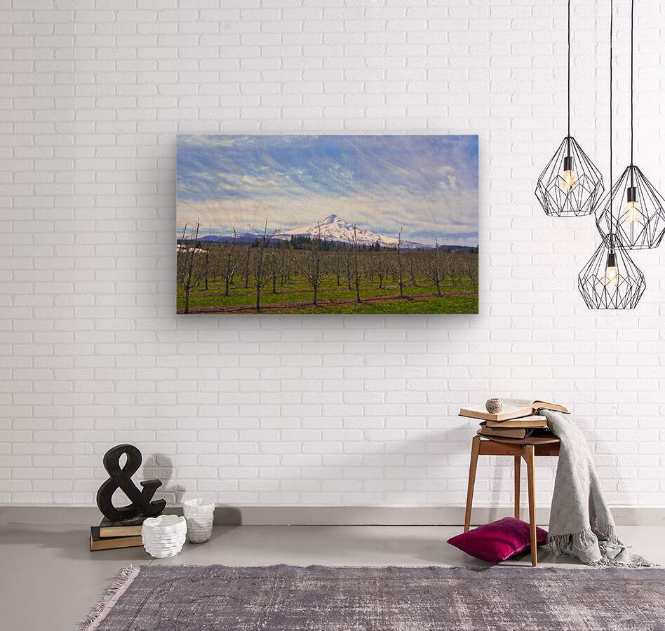 Spring at the Orchards  - Mount Hood - Oregon  Wood print