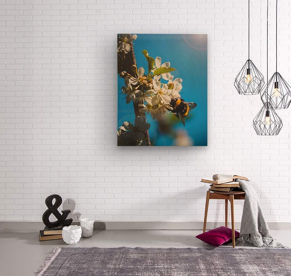 Bumble Cherry  Wood print