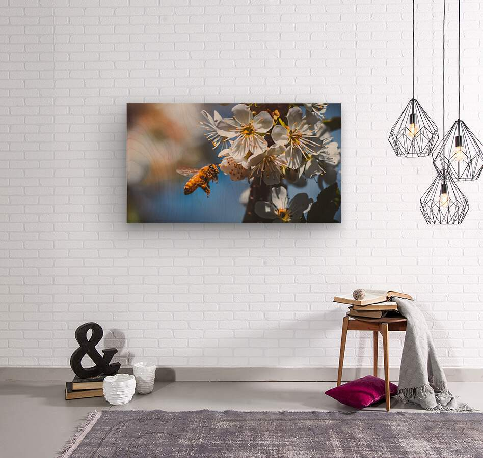 Blossom & The Bee  Wood print