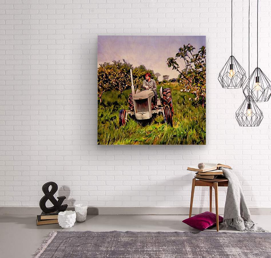 One Man And His Fergie Tractor  Wood print