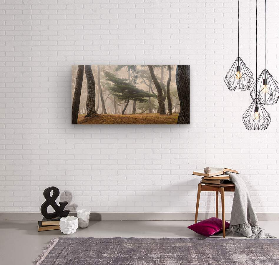 In The Misty Pine Forest  Wood print