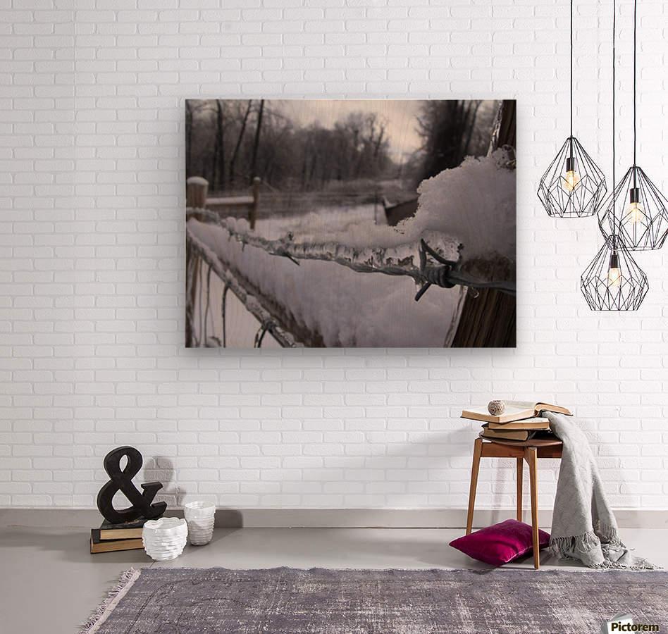 16864_738586360532_4294197_n  Wood print