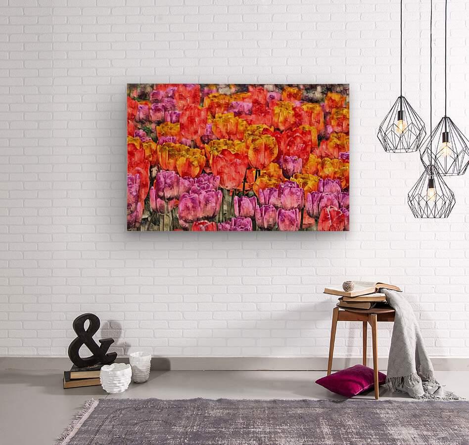 Tulips at Roozengaarde  Wood print