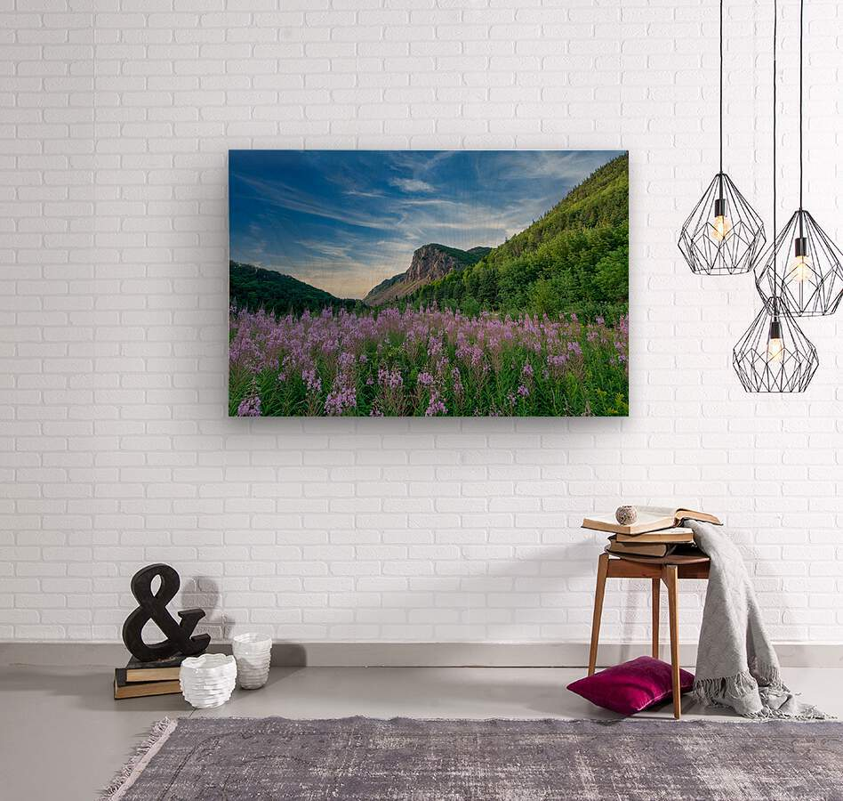 Fireweed at La Grand Falaise  Wood print