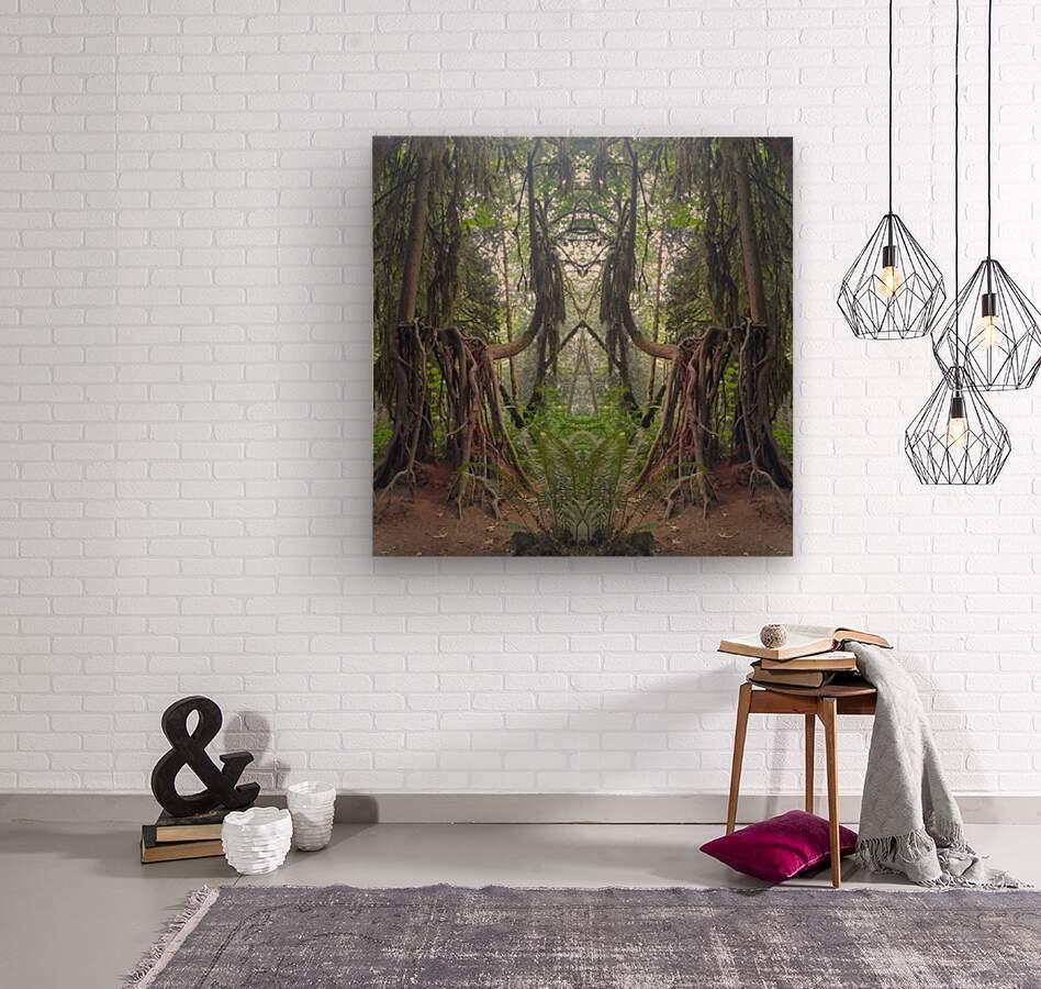 Grandmother Tree  Wood print