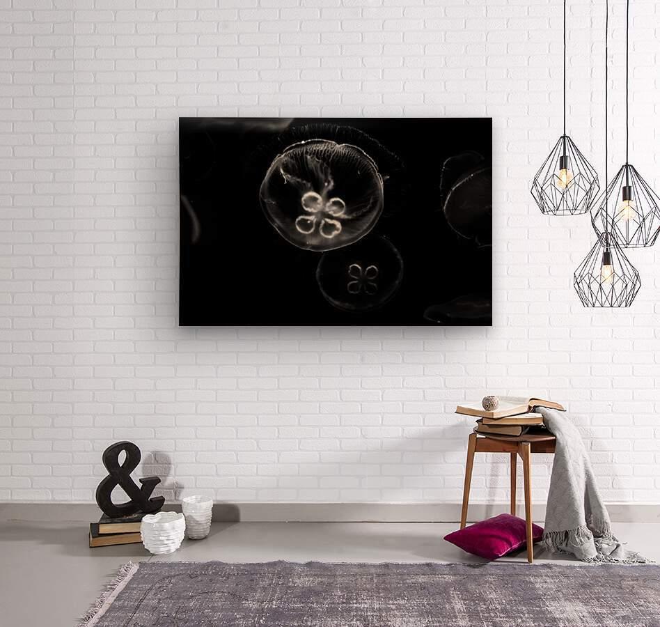 Moonlight Dance   Wood print