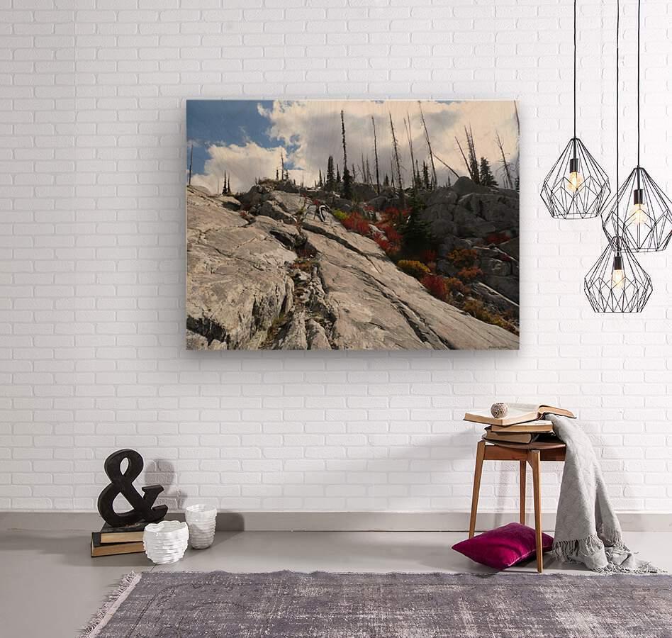 Easy Climb to Grouse Mountain  Wood print
