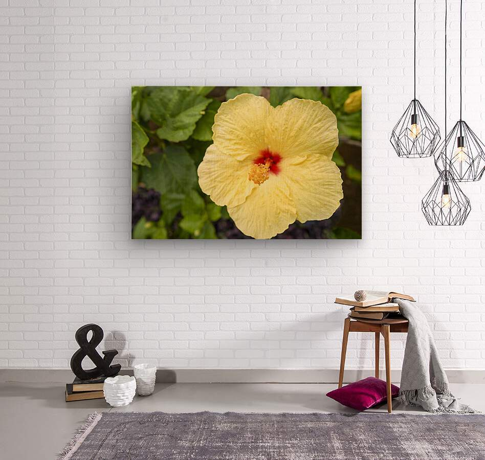 Yellow Hibiscus Tropical Flower Hawaii  Wood print