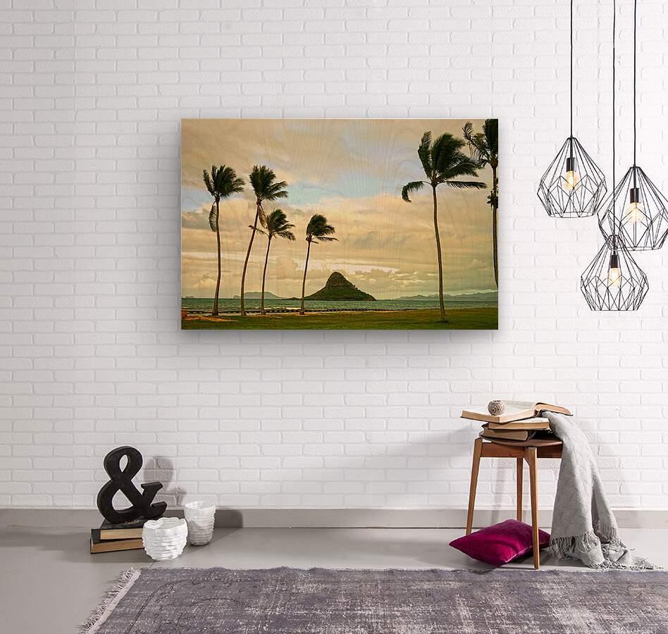 The Island of Mokoli  i from Oahu at Sunset  Wood print