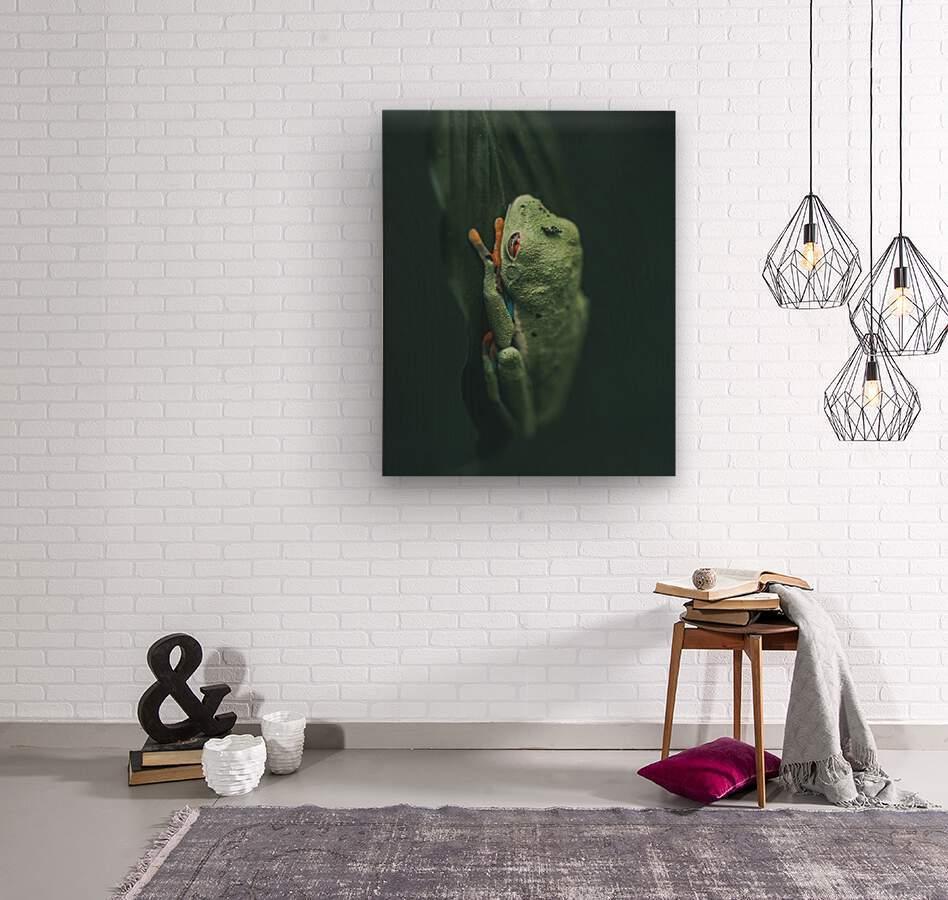 Hanging On   Wood print