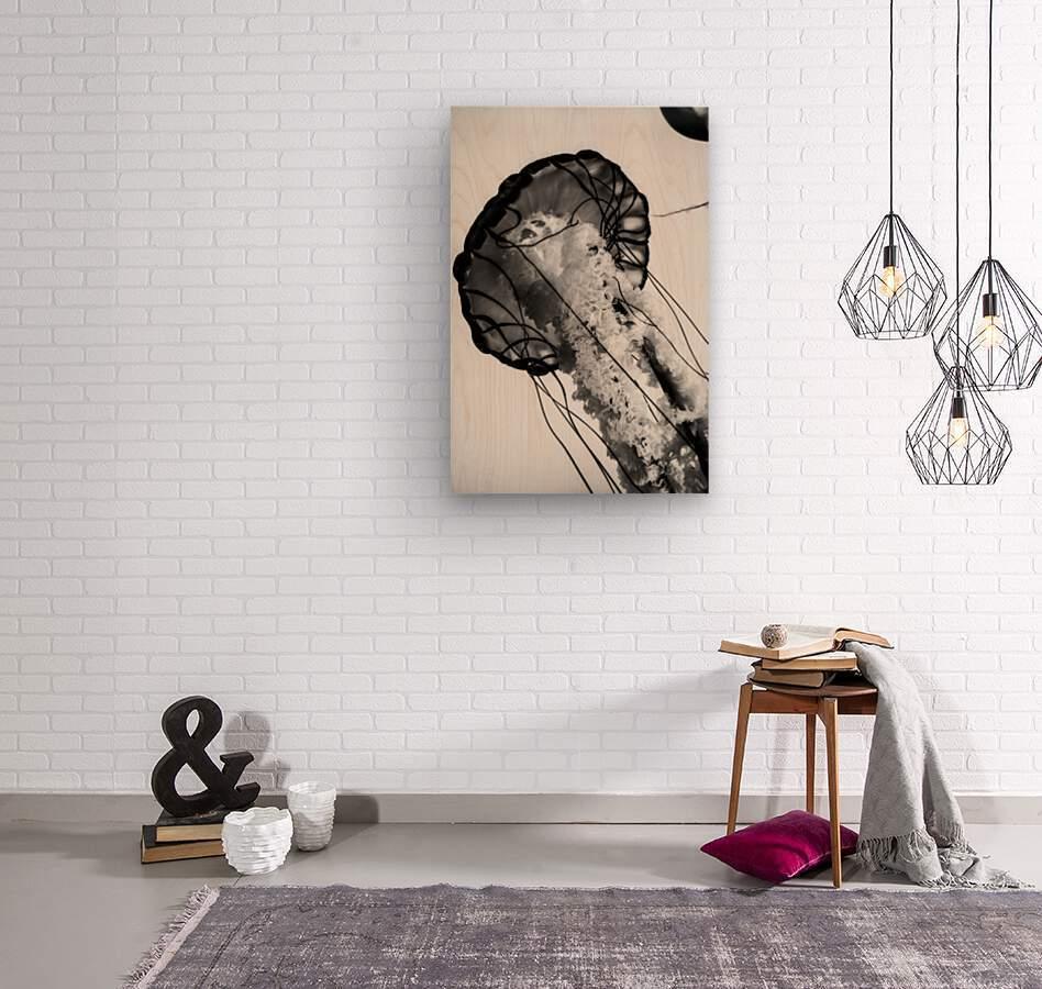B&W Jelly  Wood print