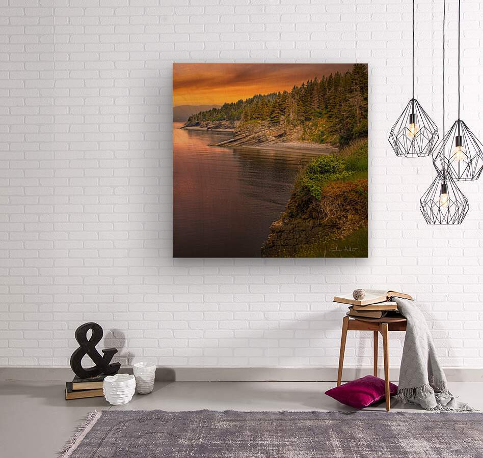 Vue Ouest Anse St-Georges  Wood print