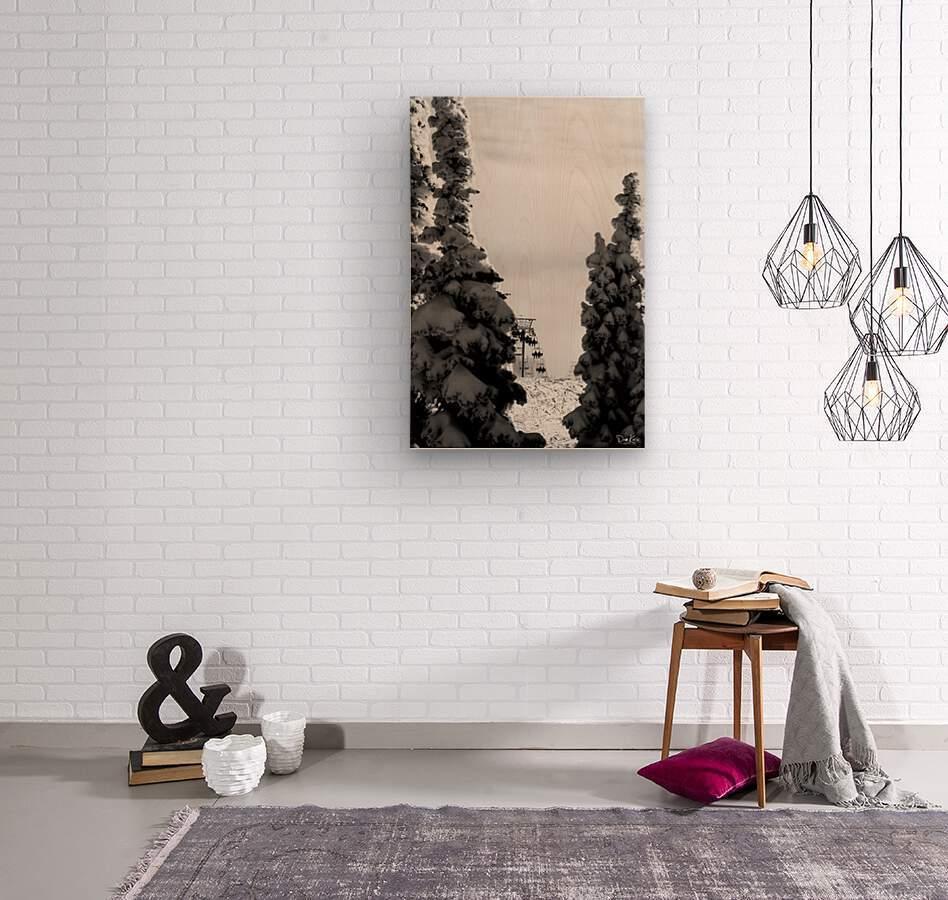 Silver Sliver  Wood print
