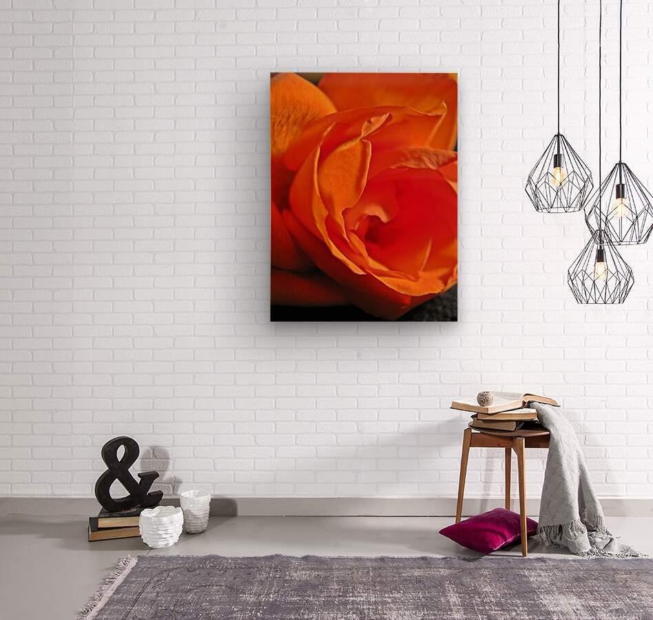 Passion Flower  Impression sur bois