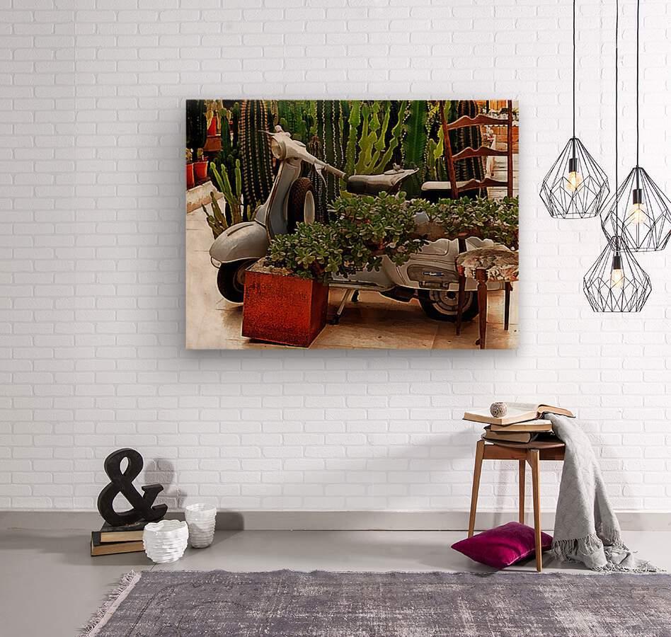 Vespa As Part Of Succulent Display  Wood print