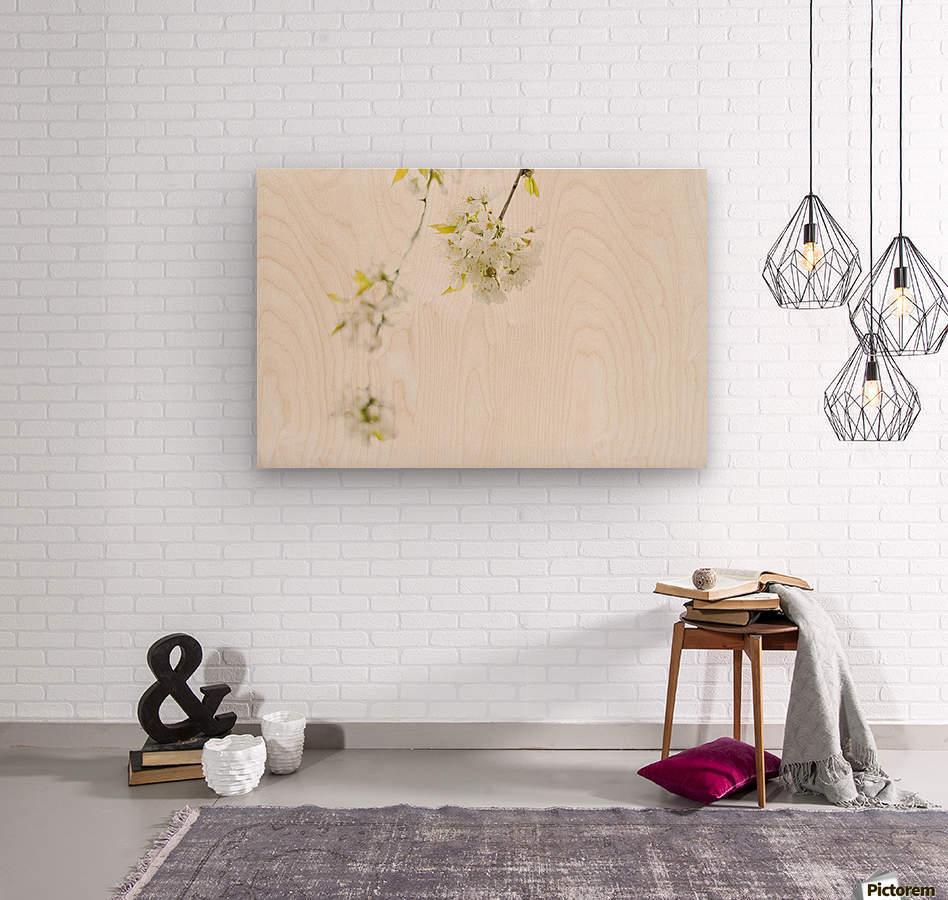 White spring  Wood print