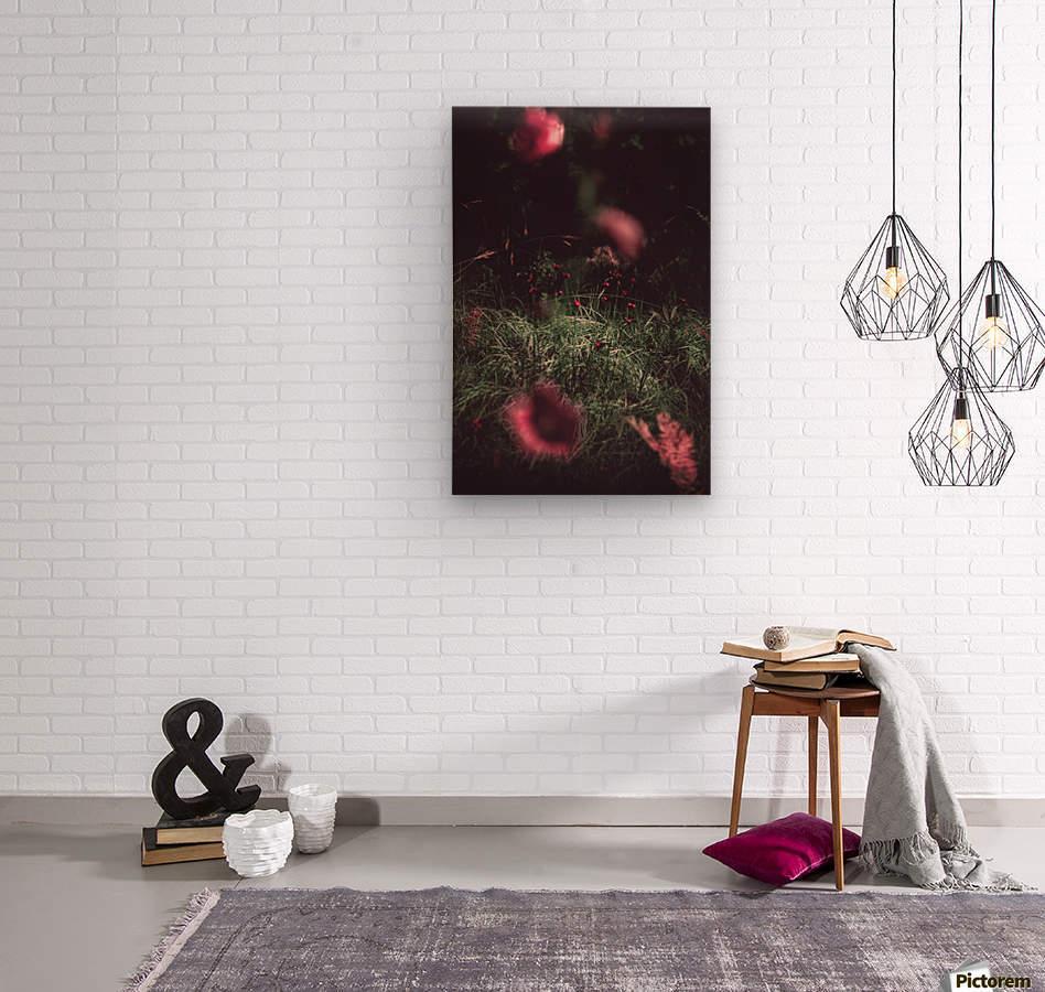 Redness   Wood print