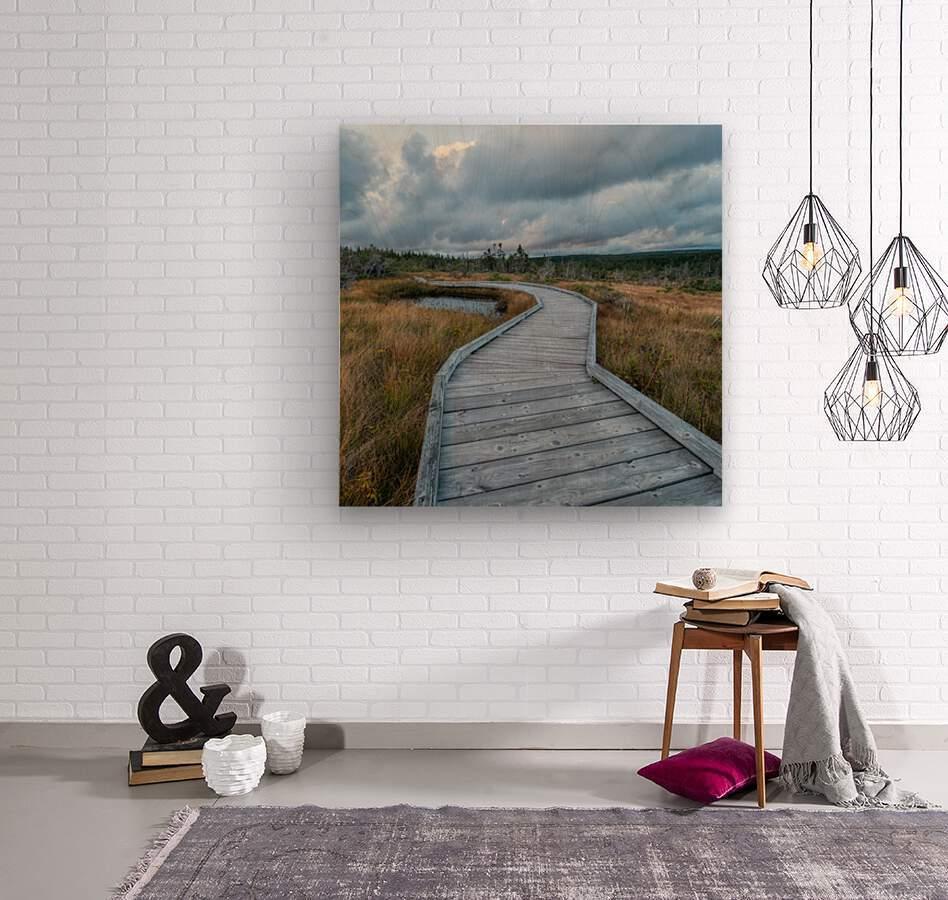 Autumn Walk - 2  Wood print