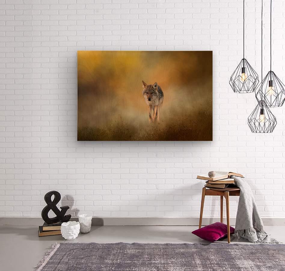 Strolling Coyote  Wood print