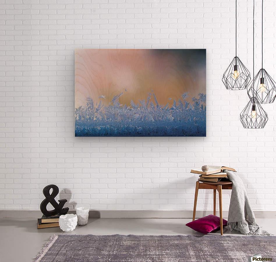 landscape_2_0126  Wood print