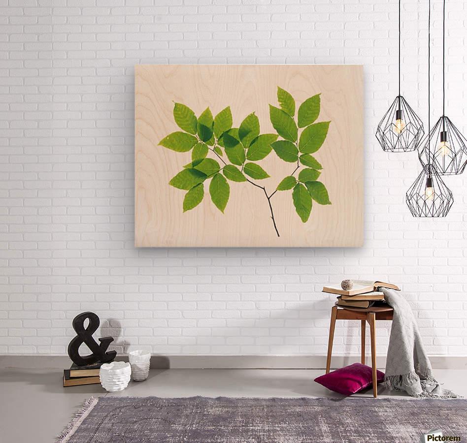 landscape_2_0707  Wood print