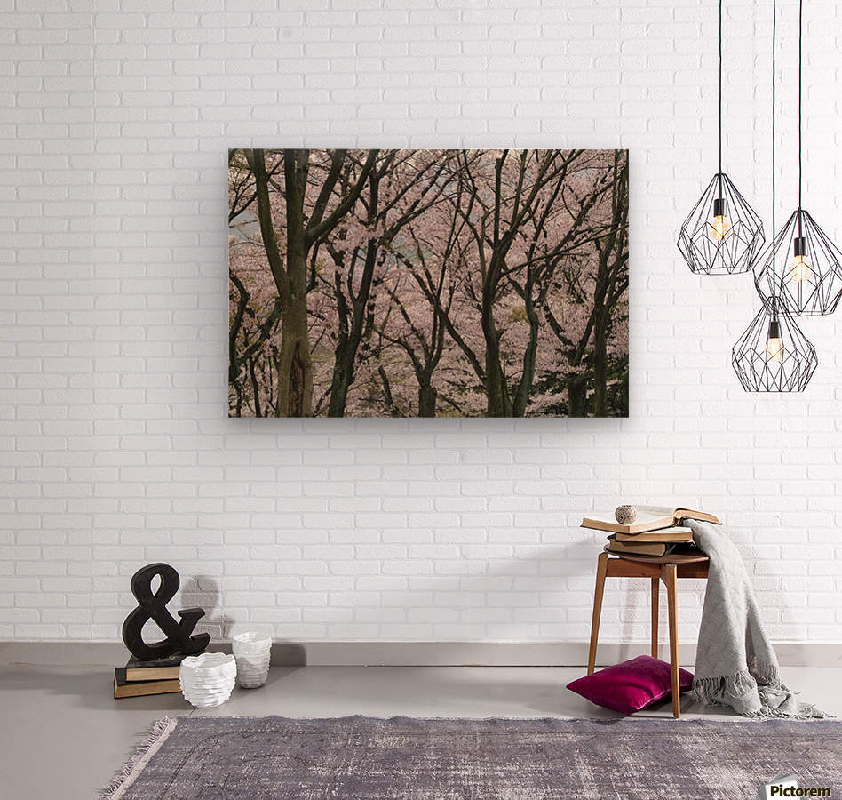 landscape_2_0949  Wood print