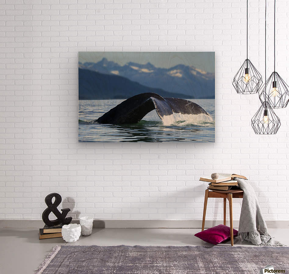 A Humpback whale lifts its flukes as it returns to the depths to feed in the bountiful waters of Alaska's Inside Passage, Tracy Arm in the distance, Stephens Passage, near Juneau.  Wood print