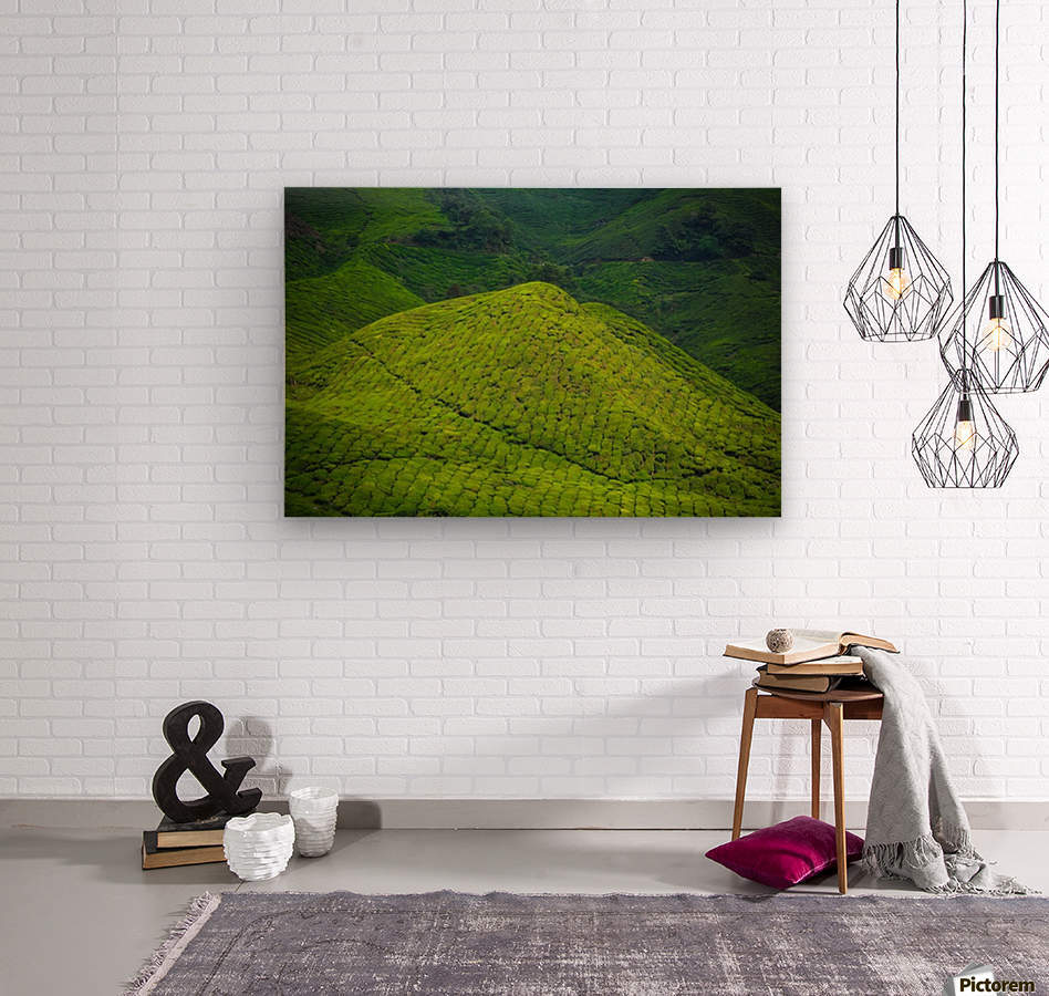 Tea plantations  Wood print