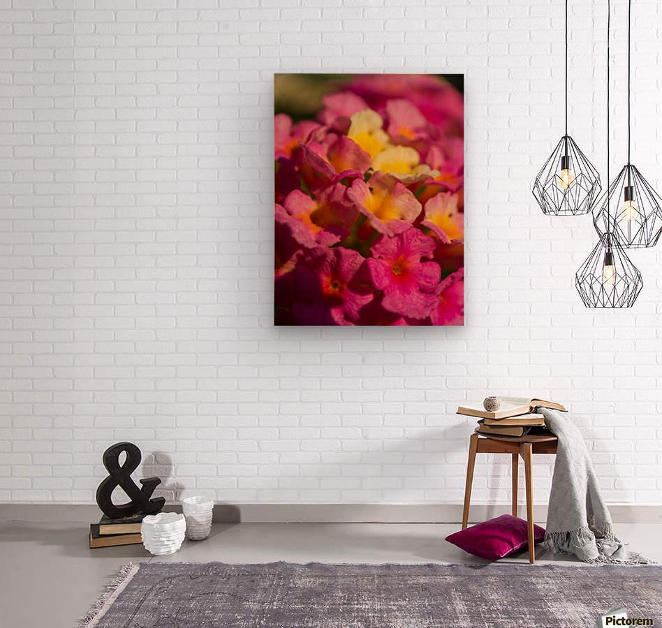flowers 1  Wood print