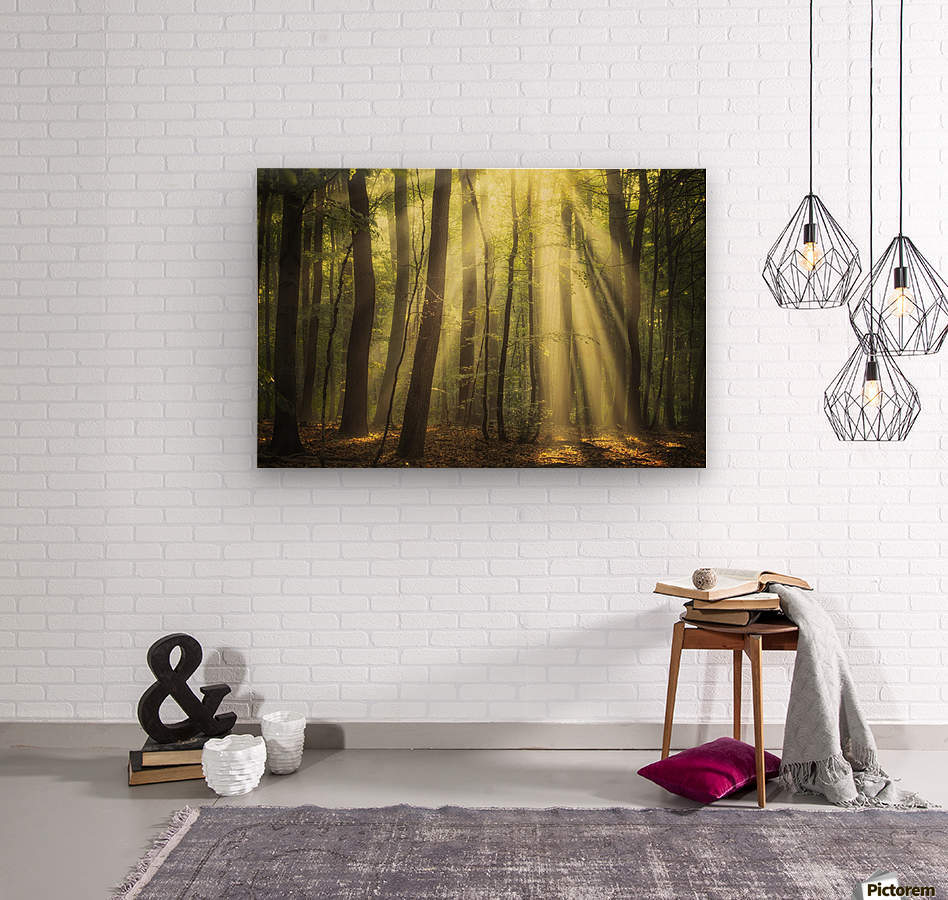 When the sun touch your heart  Wood print