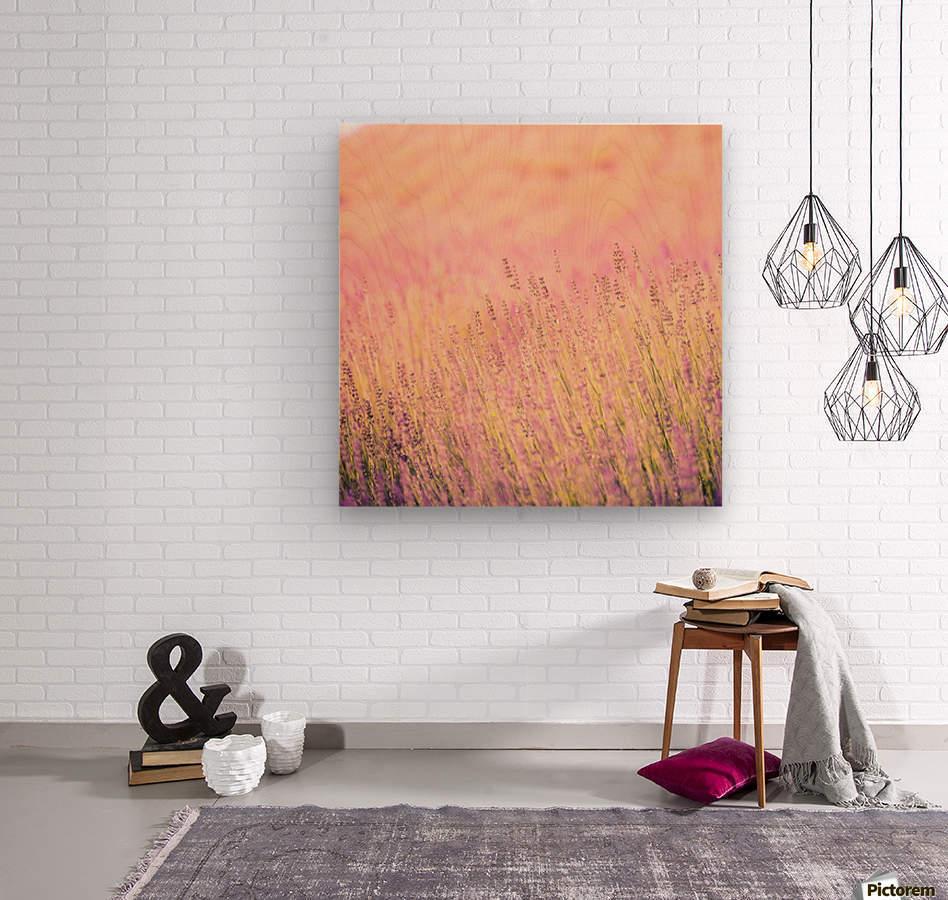 Sunset lavender flowers, instagram effect  Wood print