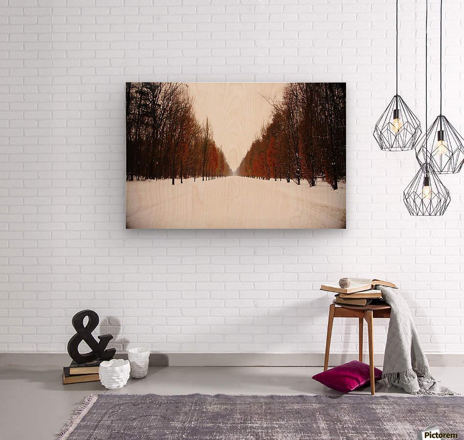 Snowy winter road  Wood print