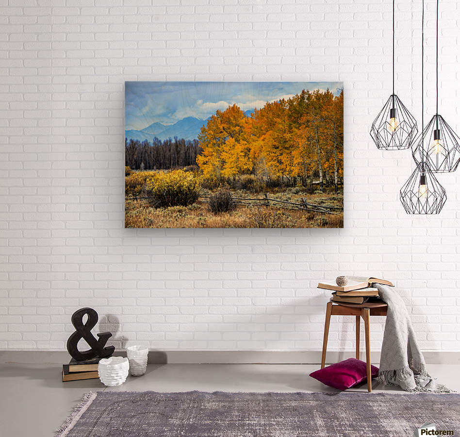 Fall Holdouts in Jackson Hole  Wood print