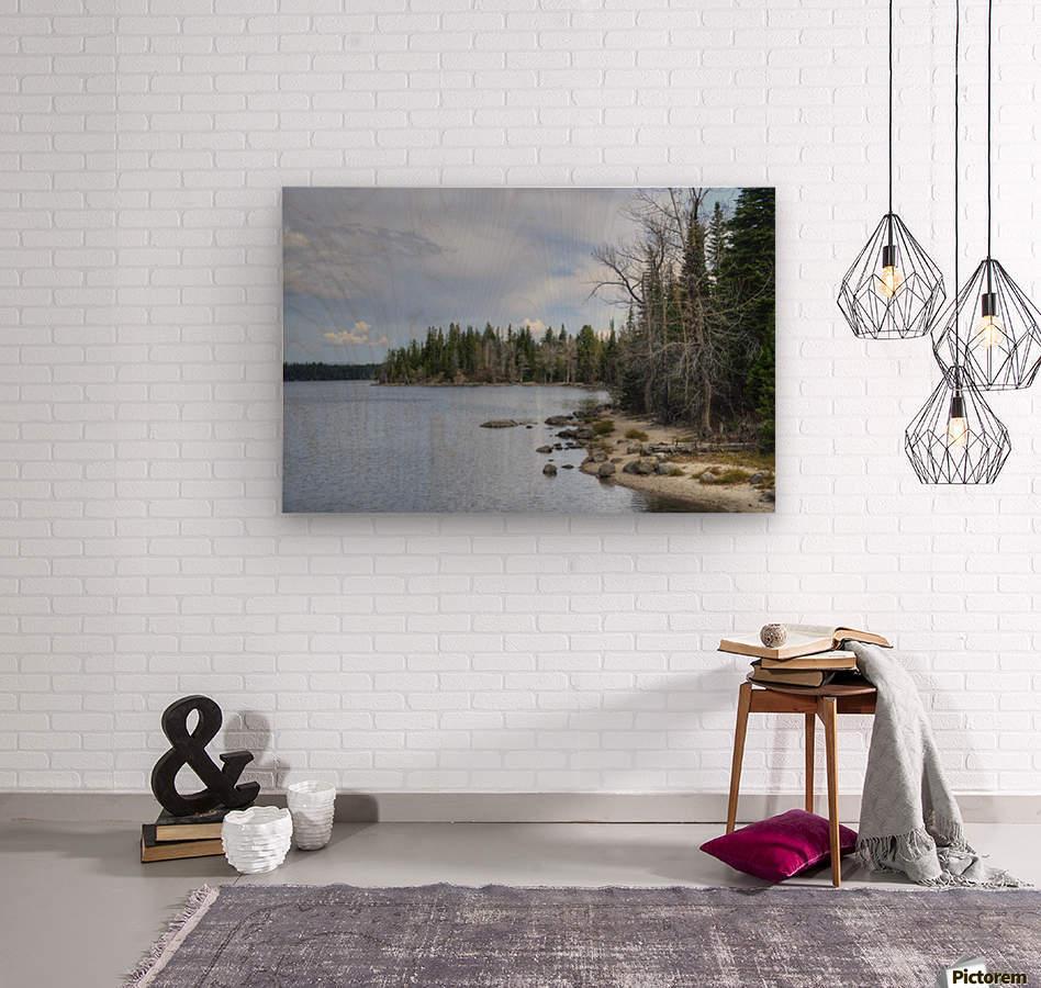 Dream Land  Wood print