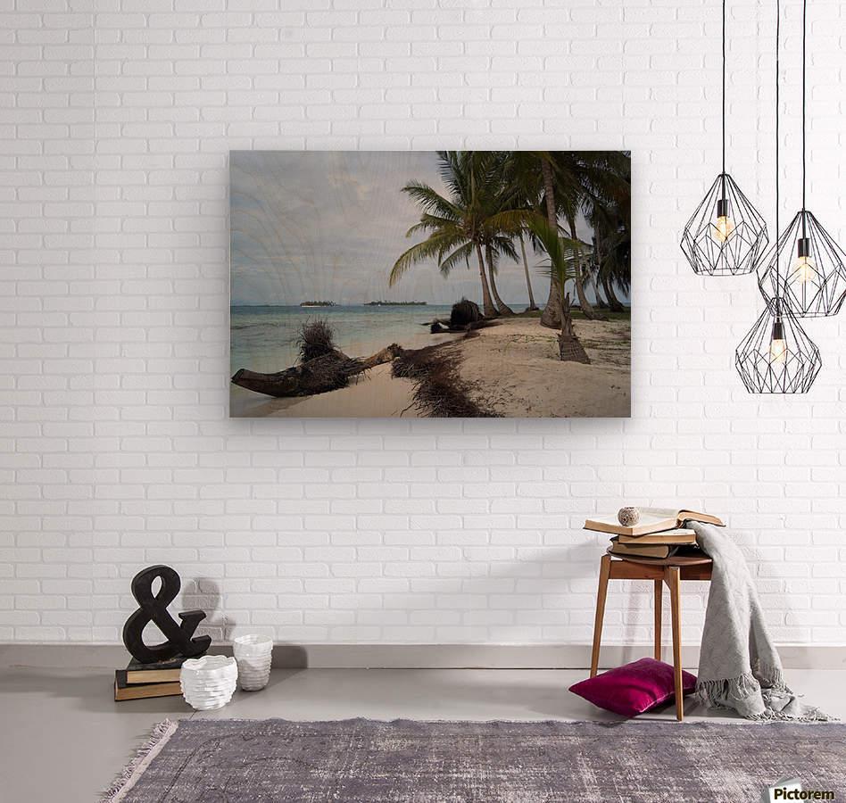 San Blas Island 4  Wood print